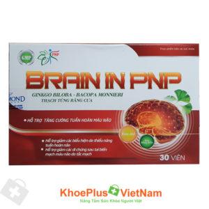 Viên uống tuần hoàn não Brain In PNP